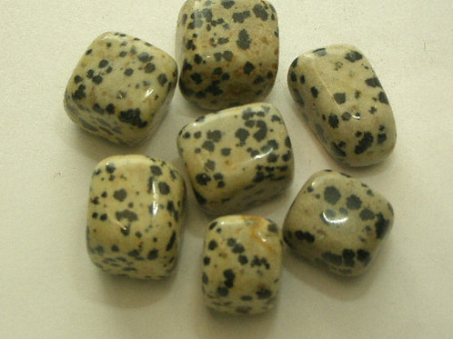 Dalmation Stone