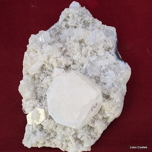 Apophyllite Cluster