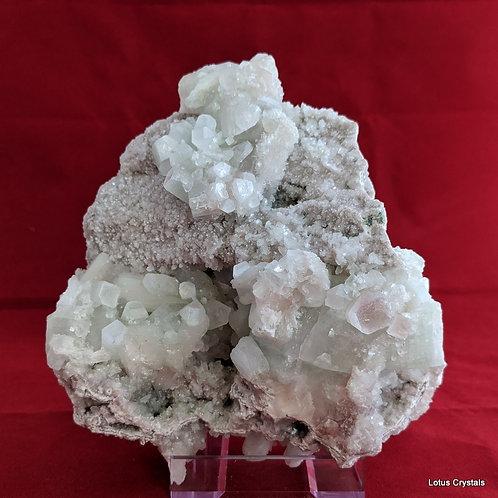 Pink Apophyllite Cluster