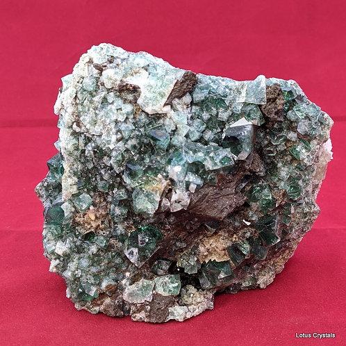 Diana Maria Mine Fluorite- Weardale