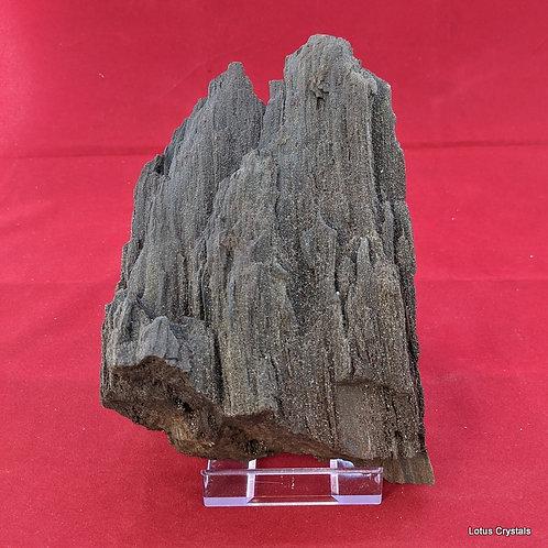 Fossilised Wood with Quartz Druze - Germany