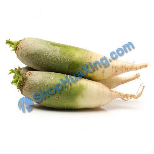 01 Green Radish 1.8-2.3LB 青萝卜 /包
