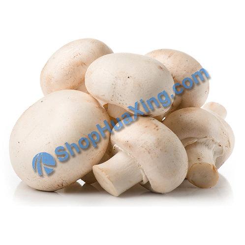01 Whole White Mushroom 0.7-0.9LB 白蘑菇 /包