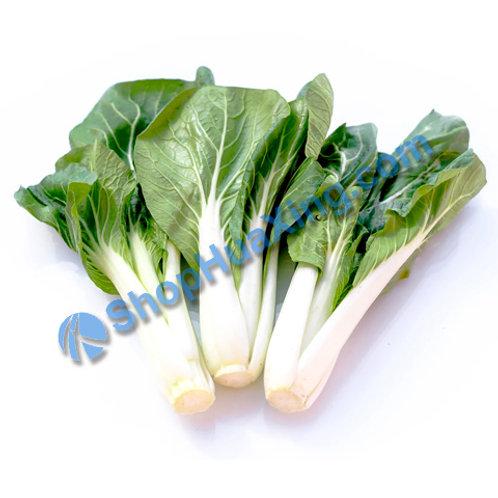 01 Long Bok Choy 1.8-2.0LB 长短白菜 /包