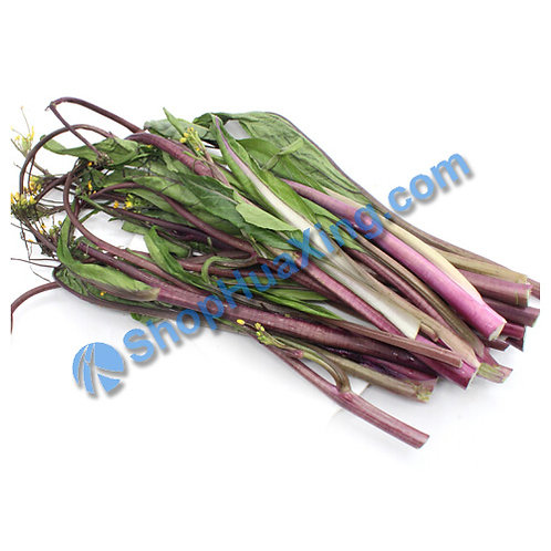 01 Yu Choy Sum Purple 1.4-1.6LB 紫菜苔 /包