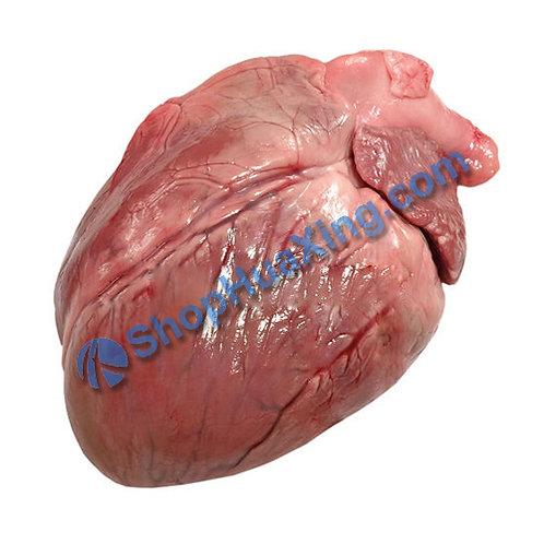 02 Pig Heart 1.0-1.2 LB 猪心 /包