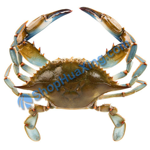 02 Blue Crab 2.2-2.4LB 蓝蟹 /包