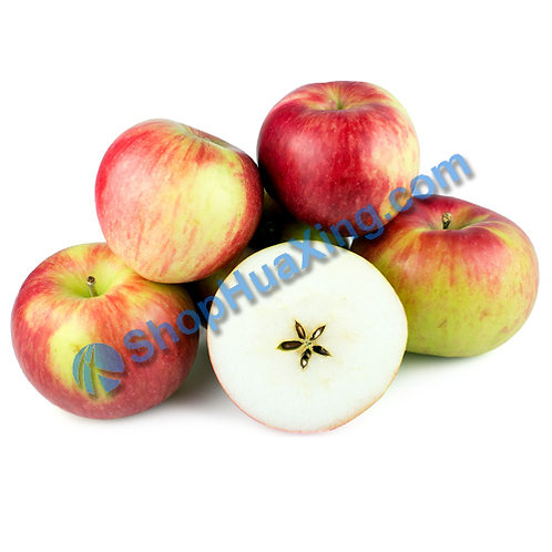 01 Snow Apple 1.1-1.4LB 雪苹果 /包