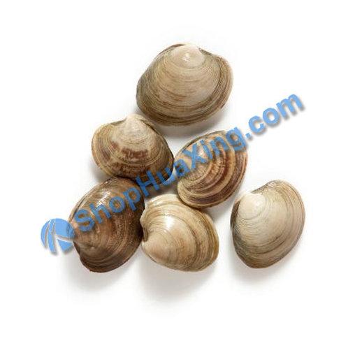02 Little / Top Neck Clam 0.9-1.1LB  小花蛤 /包