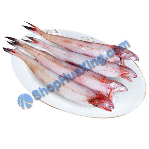 02 Bombay Duck Fish 0.9-1.1LB 龙吐鱼 /包