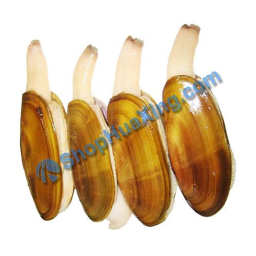 02 Pacific Razor Clam 0.8-1.0LB 加拿大刀蚬 /包