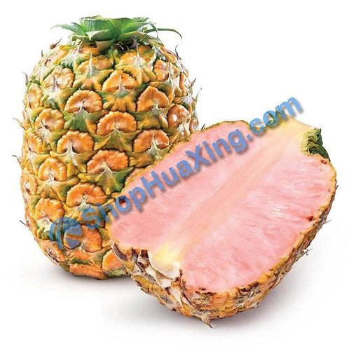 01 Pink Pineapple 红心菠萝 凤梨 /EA