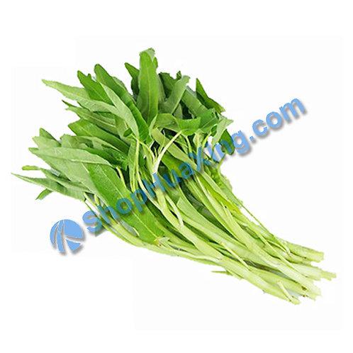 01 White Water Spinach 1.4 - 1.6LB 白通心菜 白空心菜 /包