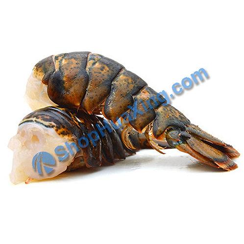 04 Frozen Lobster Tail 1.0-1.3 LB 冷冻龙虾尾 /盒
