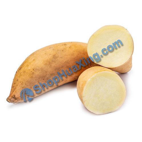 01 Yellow Yam  1.5 - 1.7LB  黄番薯 /包