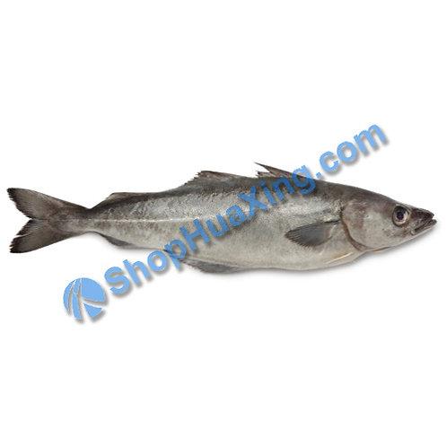 02 Whole Whiting Fish 0.9-1.1LB 九棍鱼 /EA