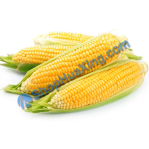 01 Sweet Corn 4pcs 甜玉米 4根