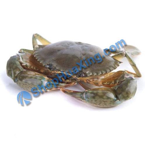02 Green Crab 膏蟹 红蟳 /LB