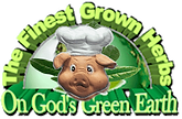 GreenEarthNew-min.png