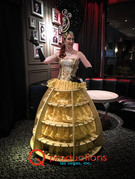 Champagne Dress Skirt