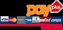 logo-webpay-plus-blanik-660x312.png