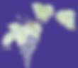 Logo_transp_re.png