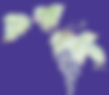 Logo_transp_li.png