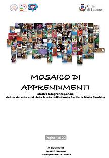 Mosaico apprendimenti.png