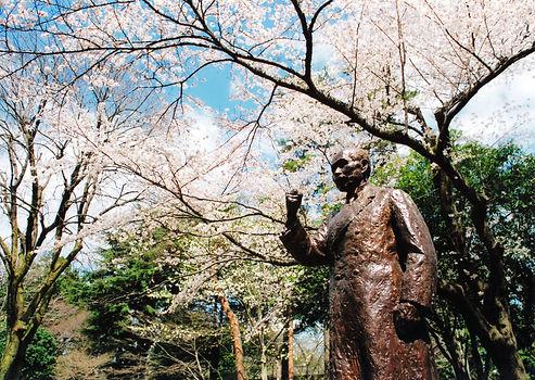 桜と博士像1 (あたり).jpg