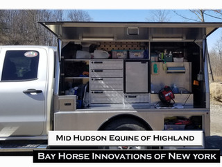 New From Bay Horse New York