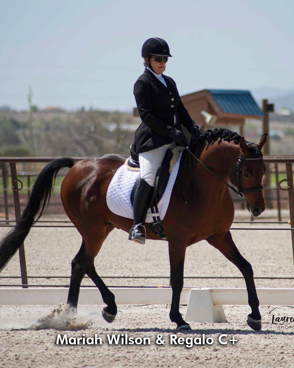 Arabian trainer Mariah Wilson dressage at HIPICO Santa Fe