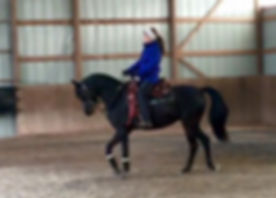 Riding lesson at Ryan Show Horses Arabian and Half Arabian Horses