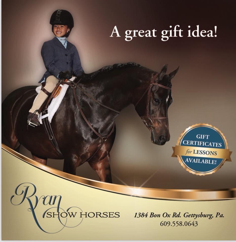 Ryan Show Horses Gettysburg PA