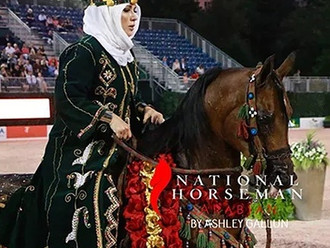 The 2017 Arabian US Open Performance Horses!