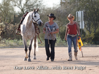 Beet Pulp Love