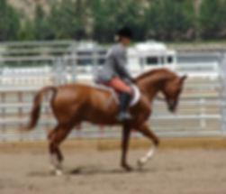 Kathy and MikeTroxler Horse Training NY