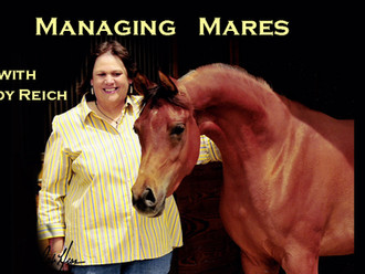 Managing Lactating Mares with Cindy Reich