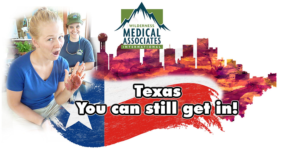 AVH Global and Wilderness Medical Associates Texas November 2019
