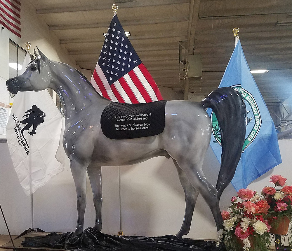 Arabian Horse For Humanity Saber benefits the Wounded Warrior Project and Arabian Horsemens Distress Fund