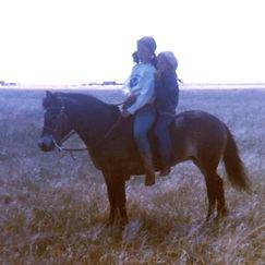 Troxler horse training NY