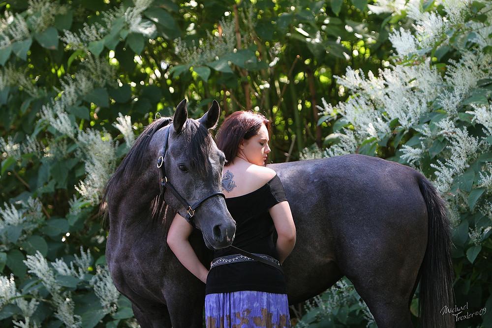 Mike Troxler Photography-Equine-Arabian Mare MK Dasha