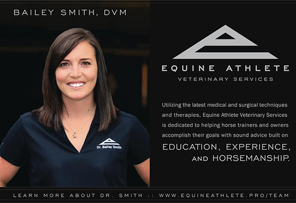 Equine Athlete Veterinary Services
