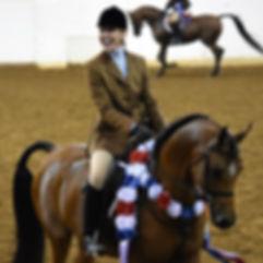 Ryan Show Horses Arabian and Half Arabian Horses-Happy client