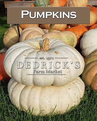 Dedricks Farm Market pumpkin image for social share and website image.jpg