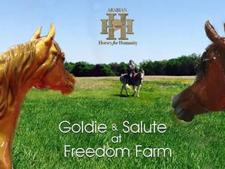 Freedom Farm Open House