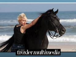 Pro Photo Sessions at Platinum Performance Horses