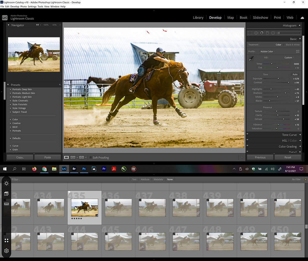 Lightroom settings for improving a raw image by professional photographer Michael Troxler