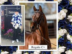 Regalo C+ wins at Region 7