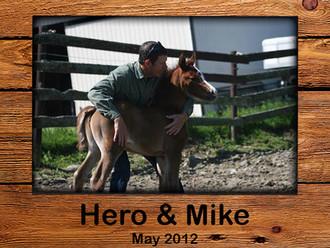 #heroandsha 2012