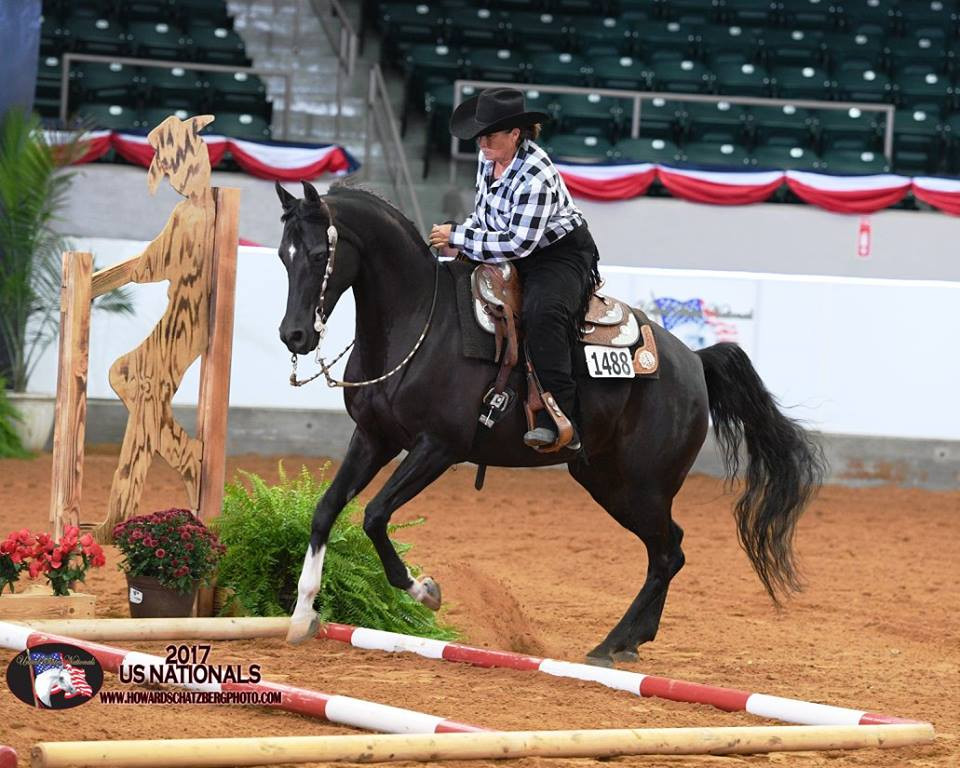 Agracie Girl and Jill Mitchell 2017 National Champion Arabian Trail Open